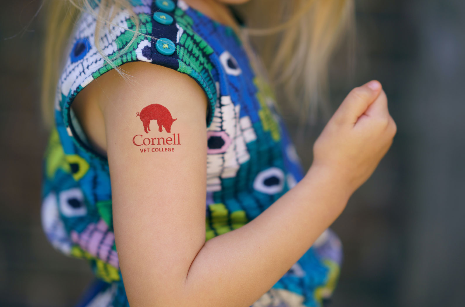 Cornell Vet College Temporary Pig Tattoo
