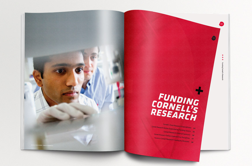 Cornell Research Annual Report Publication Red Section Intro