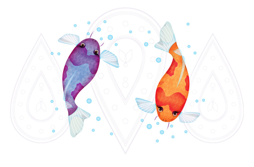 Pamboo Koi Fish Illustration